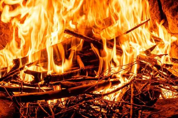 lidia fuego del hogar